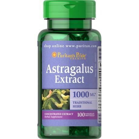 Astragalus 1000 mg / 100 kaps